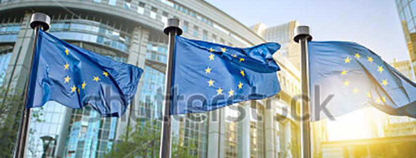 EU Evans article